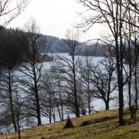 Åkerström/Brandsbo naturreservat.