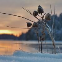 Vinterfoton från Bredfjället.