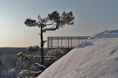 Vinterpromenix -11 5