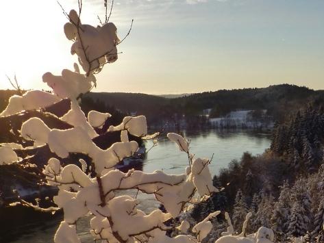 Vinterpromenix -12 7 Göta Älv