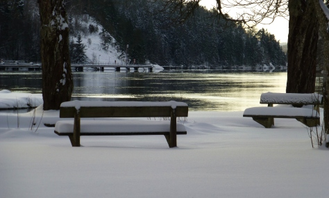 Vinterpromenix -12 8 Gamle Dal