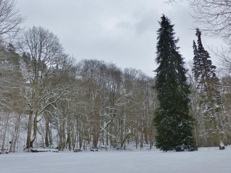 Hunneberg. 15. Nygårds Park.