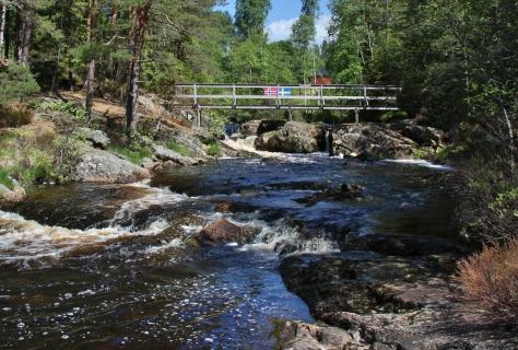 Älgafallet vid Riksgränsen Norge-Sverige. 1