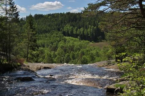 Älgafallet vid Riksgränsen Norge-Sverige. 2