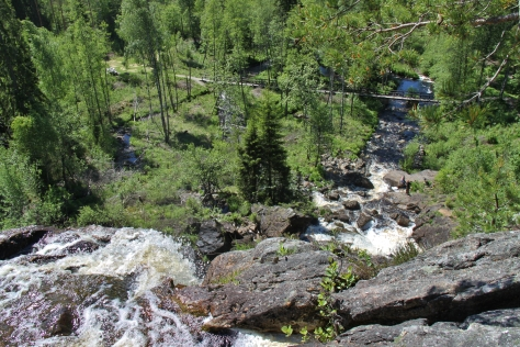Älgafallet vid Riksgränsen Norge-Sverige. 6