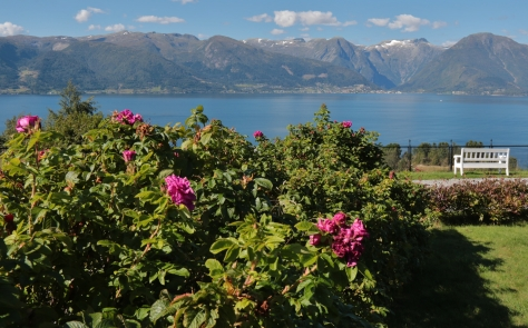 65 Vangsnes, Norge